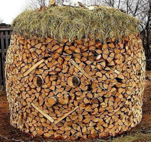 firewood stack with face